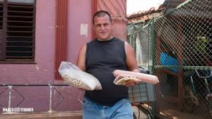 WURTS, es gibt Wurst in Kuba