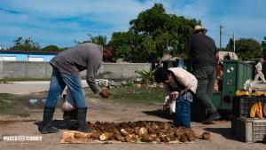 Heute gehen wir mal Gemüse kaufen in Playa Giron