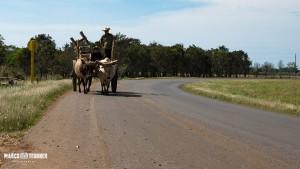 on the Road - leben wie im Mittelalter